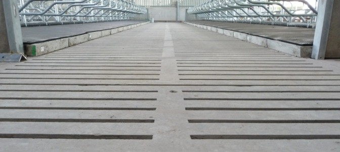 Livestock Flooring (cattle)
